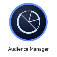 Audience-Manager_img