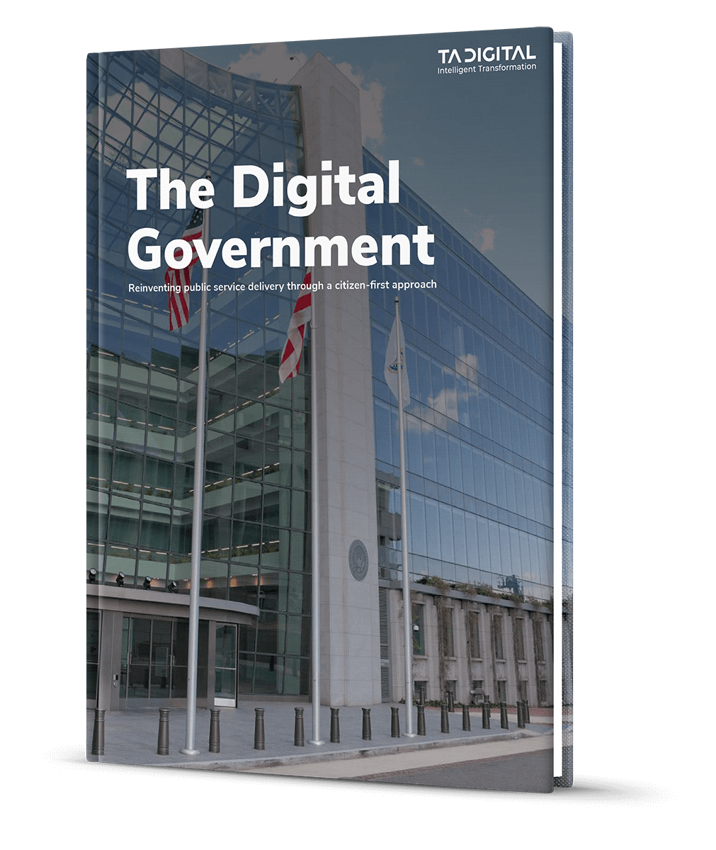 The Digital Government ebook