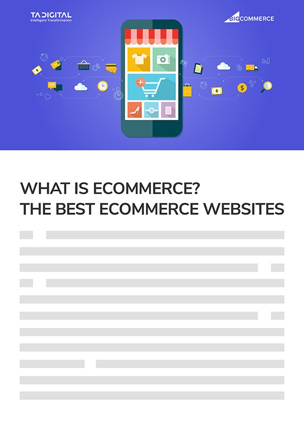 What is Ecommerce? The Best Ecommerce Websites